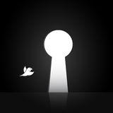 Vector las imágenes de los pájaros que están volando hacia fuera la puerta Fotos de archivo libres de regalías