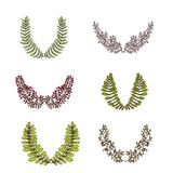 Vector Laurel Branches and Frames Collection. Colored Stock Photography