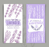 Vector lavender background Royalty Free Stock Photography