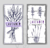 Vector lavender background Royalty Free Stock Images