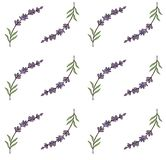 Vector lavender seamless pattern. Beautiful violet lavender flowers retro background.  Seamless pattern for fabric, paper. Royalty Free Stock Photography