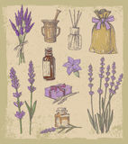 Vector lavender set Stock Photography