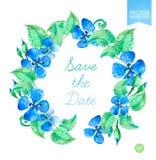 Vector le corone floreali dell'acquerello con i fiori blu dell'estate Conservi il modello della data Immagine Stock Libera da Diritti