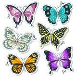 Vector le icone variopinte, metta le varie farfalle decorative Fotografia Stock Libera da Diritti