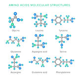 Vector le strutture molecolari degli aminoacidi isolate sull'insieme di bianco Immagine Stock Libera da Diritti