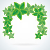 Vector leaf frame or speech bubble Royalty Free Stock Photo