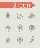 Vector Leaf icon set Royalty Free Stock Images