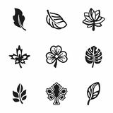 Vector Leaf icon set Stock Images