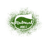 Vector leaf with lettering: natural 100 percent. Royalty Free Stock Photo