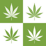 Vector leaf of marijuana royalty free illustration