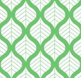 Vector Leaf Pattern Green and White Background Illustration Royalty Free Stock Image