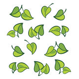 Vector leafs, isolated Stock Photo