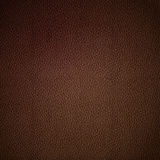 Vector leather texture Stock Image