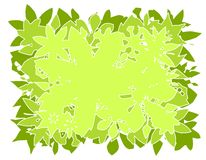 Vector Leaves Background  Stock Photos