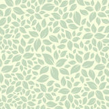 Vector leaves background texture leaf Royalty Free Stock Image