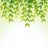 Vector leaves decoration. Royalty Free Stock Images