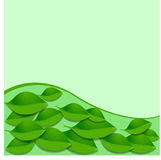 Vector leaves and green wave pattern. Abstract ecology background Royalty Free Stock Photo