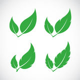 Vector leaves icon set Stock Photo