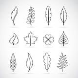 Vector leaves icon set Royalty Free Stock Photo