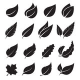 Vector leaves icon set Stock Photos