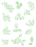 Vector Leaves Icons Royalty Free Stock Photo