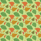 Vector leaves seamless pattern. Foliage background. Stock Image