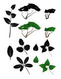 Vector leaves and tree Stock Photos