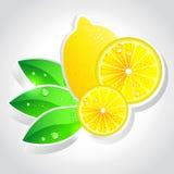 Vector lemon Royalty Free Stock Photos