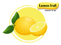 Vector Lemon fruit isolated on color background,illustrator 10 eps Royalty Free Stock Photography