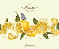 Vector lemon seamless border. stock illustration