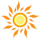 Vector lemon sun. Abstract isolated lemon sun. vector illustration