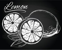Vector Lemons with leaves Stock Images