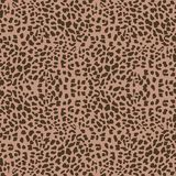Vector leopard  background Royalty Free Stock Image