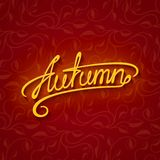Vector lettering Autumn Royalty Free Stock Photos