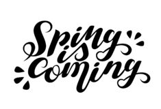 Vector lettering Spring is coming. Isolated. Handwritten Quote, Saying. EPS 10. royalty free illustration