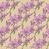 Vector Lily Pattern Stock Photos