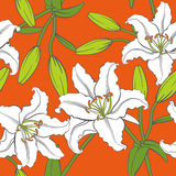 Vector Lily Seamless Pattern in Orange Background Stock Image
