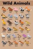 Vector lindo de la historieta del cerdo del oso de panda del leopardo de la cebra del hipopótamo del tigre del búfalo del mapache ilustración del vector