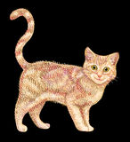 Vector lindo del gráfico del gato Fotografía de archivo