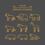 Vector line african animals icon set. Stock Photos