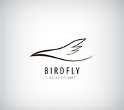Vector line bird logo, Abstract Royalty Free Stock Photos