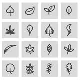 Vector line leaf icons set. On grey background Royalty Free Stock Photography
