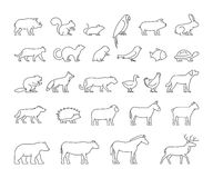 Vector line set of domestic and wild animals. Vector line set of domestic, farm and wild animals. Linear silhouettes animals isolated on a white background Royalty Free Stock Images