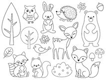Free Vector Line Set Of Woodland Animals Outline For Coloring Stock Photos - 180871533