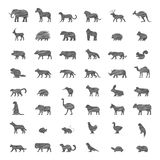 Vector line set of silhouettes of animals Royalty Free Stock Photo