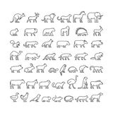 Vector line silhouettes of domestic, farm and wild animals Royalty Free Stock Photos