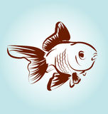 Vector Line sketch fish Royalty Free Stock Images