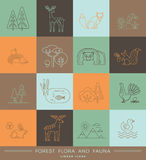 Vector linear icons of forest flora and fauna. Stock Photos