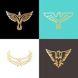 Vector linear logo design templates Royalty Free Stock Photo