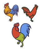 Vector linear rooster Royalty Free Stock Photos